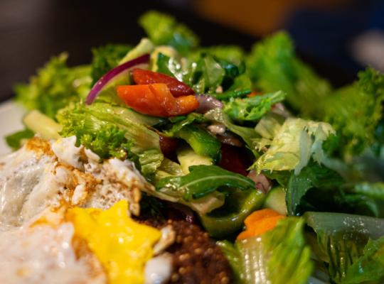 grüner, frischer Salat mit einem knusprigen vegetarischen Burger Patty und Spiegelei