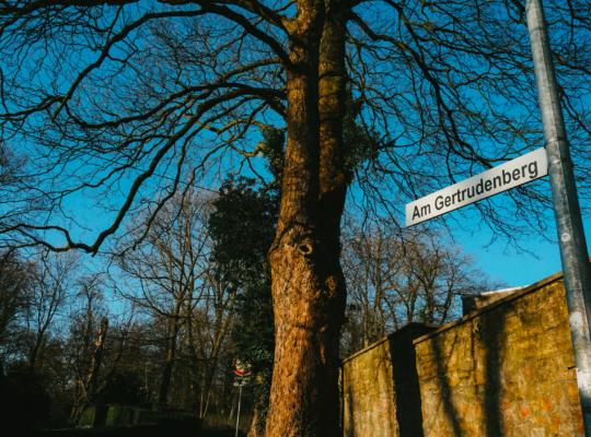 """Straßenschild """"Am Gertrudenberg"""" zum Bürgerpark in Osnabrück"""